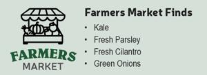 Farmers Market Finds Quinoa and Fresh Herb Salad